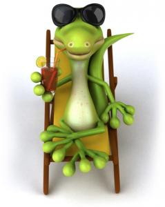 dragon barbudo vacaciones