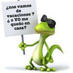 ✈️🚢🦎  Pogona Vitticeps durante las vacaciones | Cuidando a tu Dragón barbudo✈️🚢🦎
