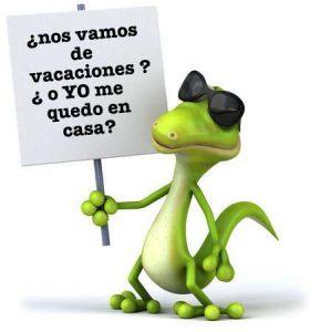 pogona en vacaciones