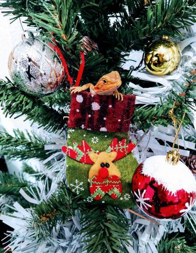 Dulce de navidad