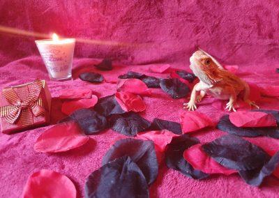 Erika De La Fuente Foto del concurso: Mi mejor San Valentín