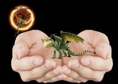Adopta a Un Dragón Barbudo